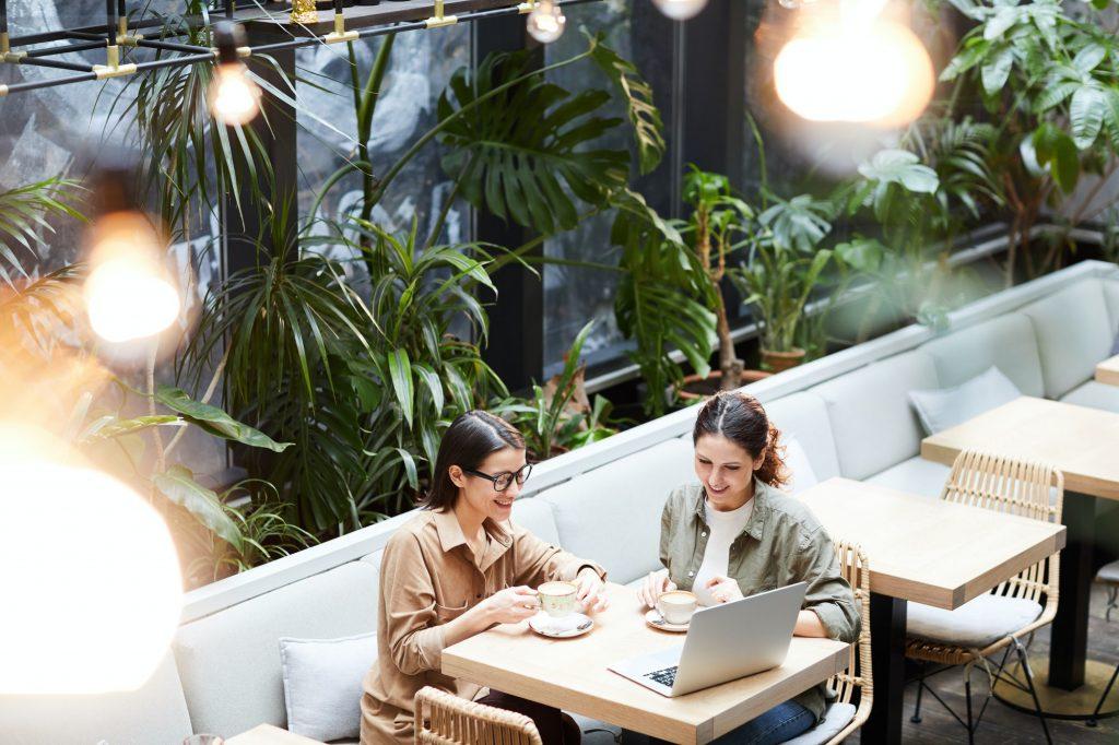 Enterprising ladies analyzing sales of online store